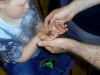 Bug-Fest-Sherborne-Youth-Club-016