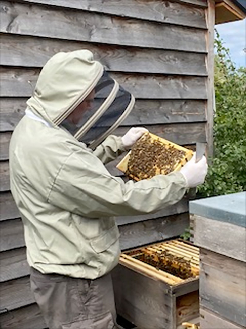 Bee Keeping with Catherine and Byron